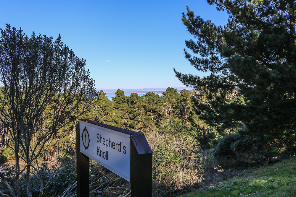 17md_blog_12-2-16_km-001-shepherds-knoll