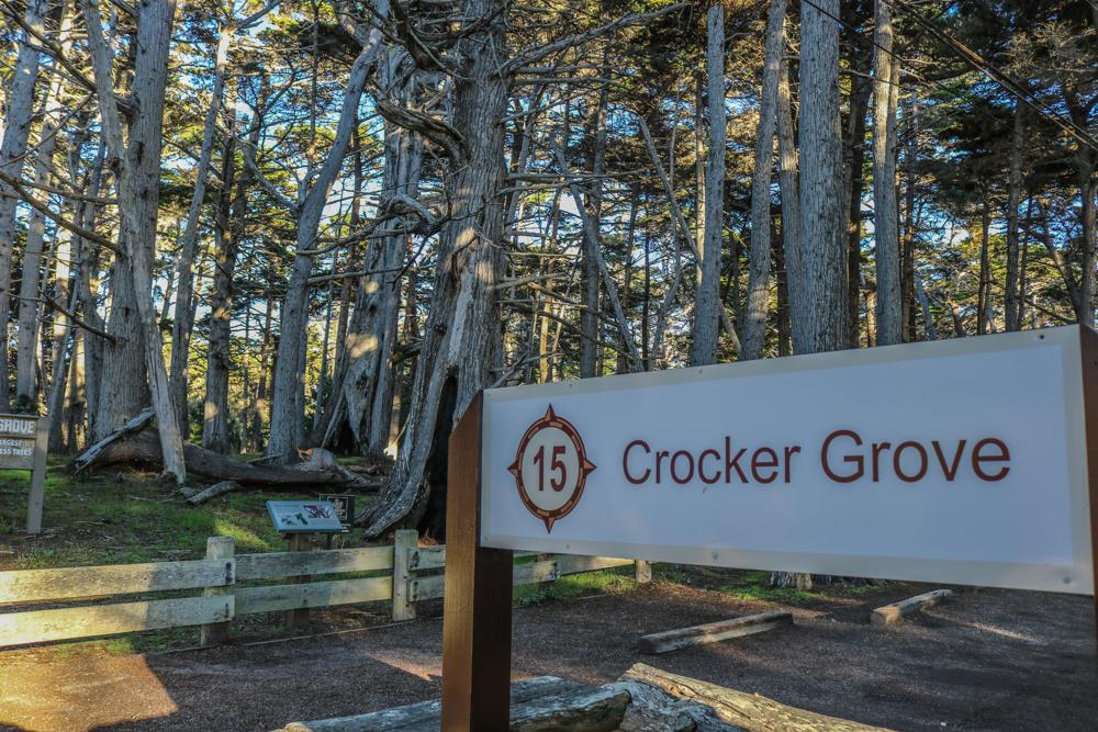 crocker-grove