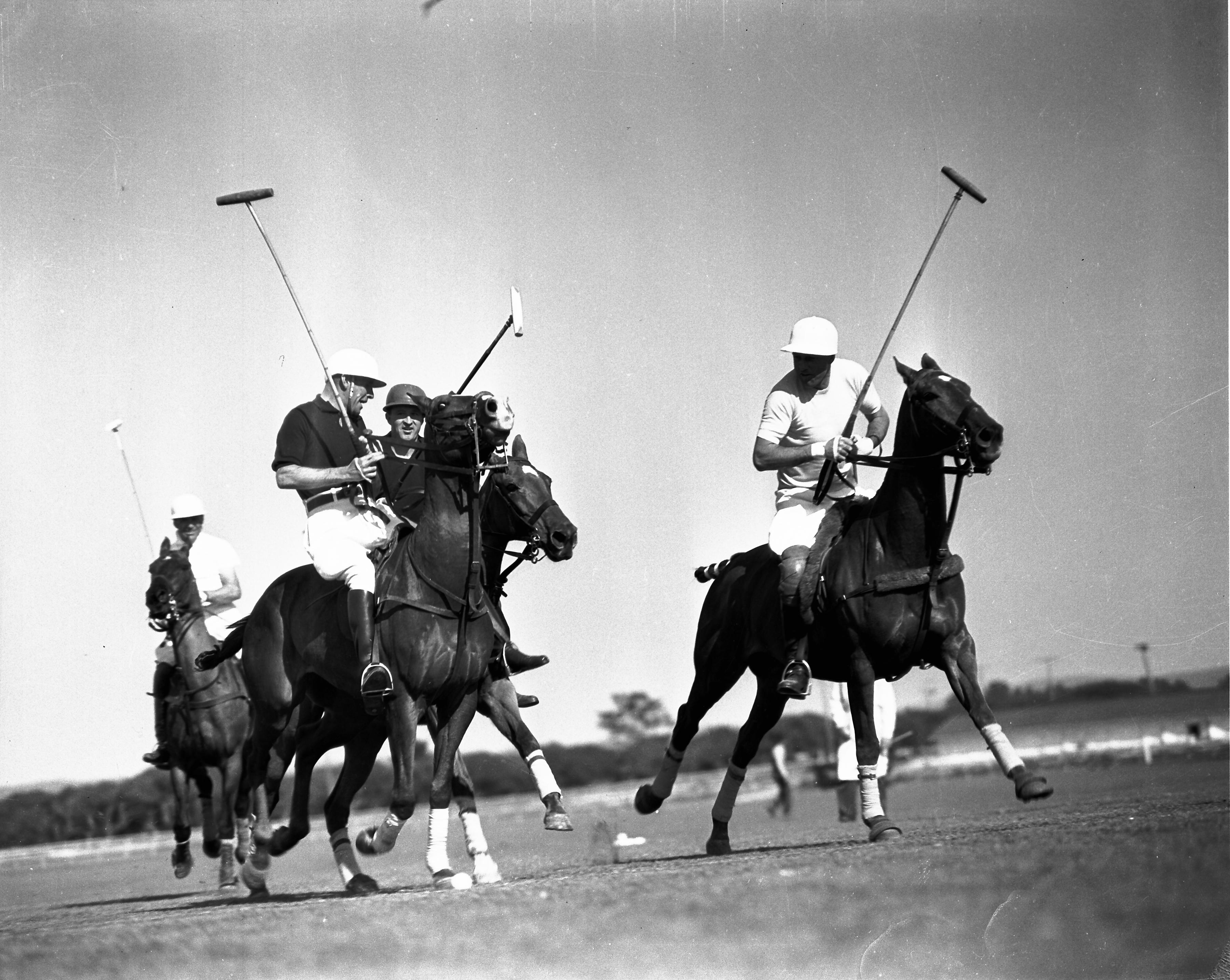 Polo at Del Monte