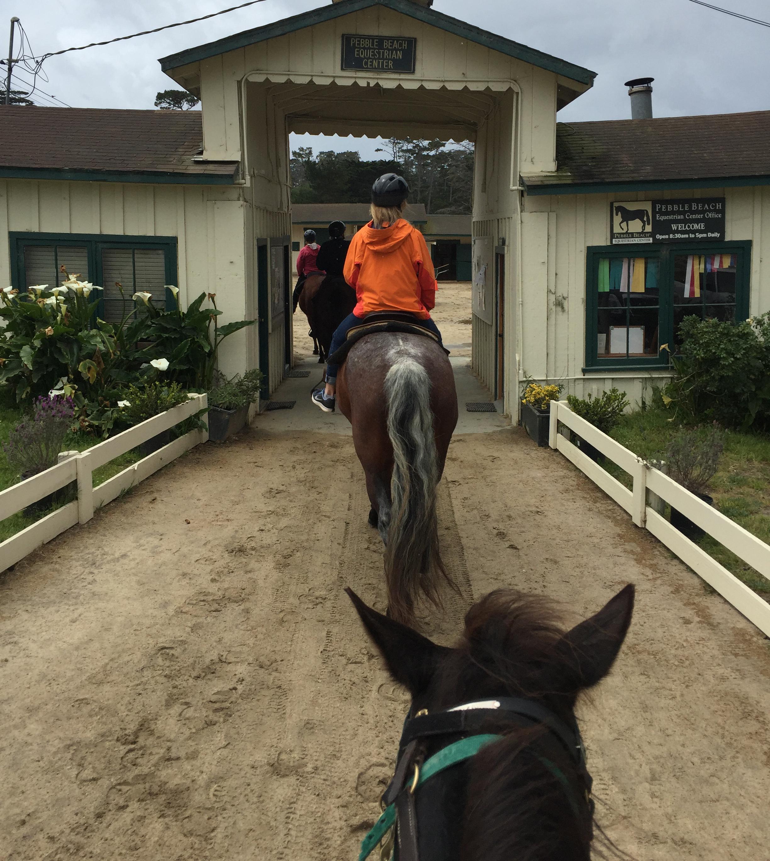 equestrain-center