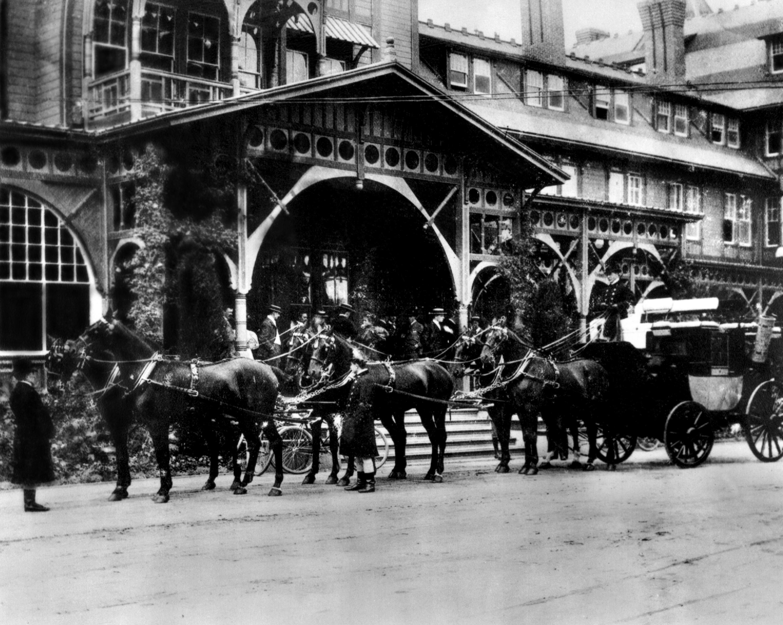 Horses leaving Hotel Del Monte