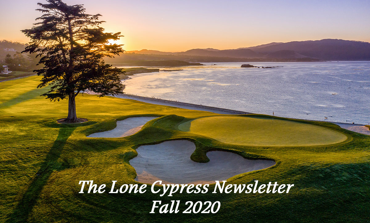 The Lone Cypress Newsletter - Fall 2020