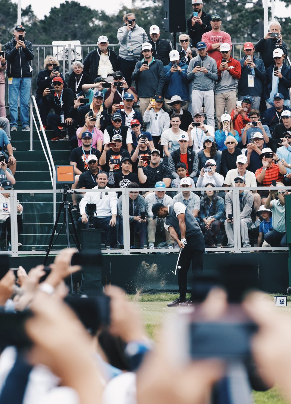 It's easier to hear Tiger than see him.