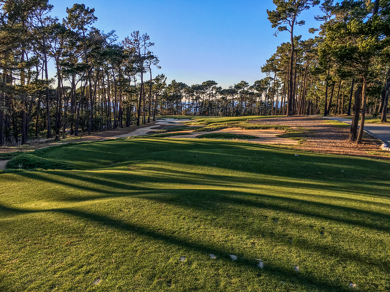 Green golf course fairway surrounded with skinny, tall trees casting a shadow on the grass.