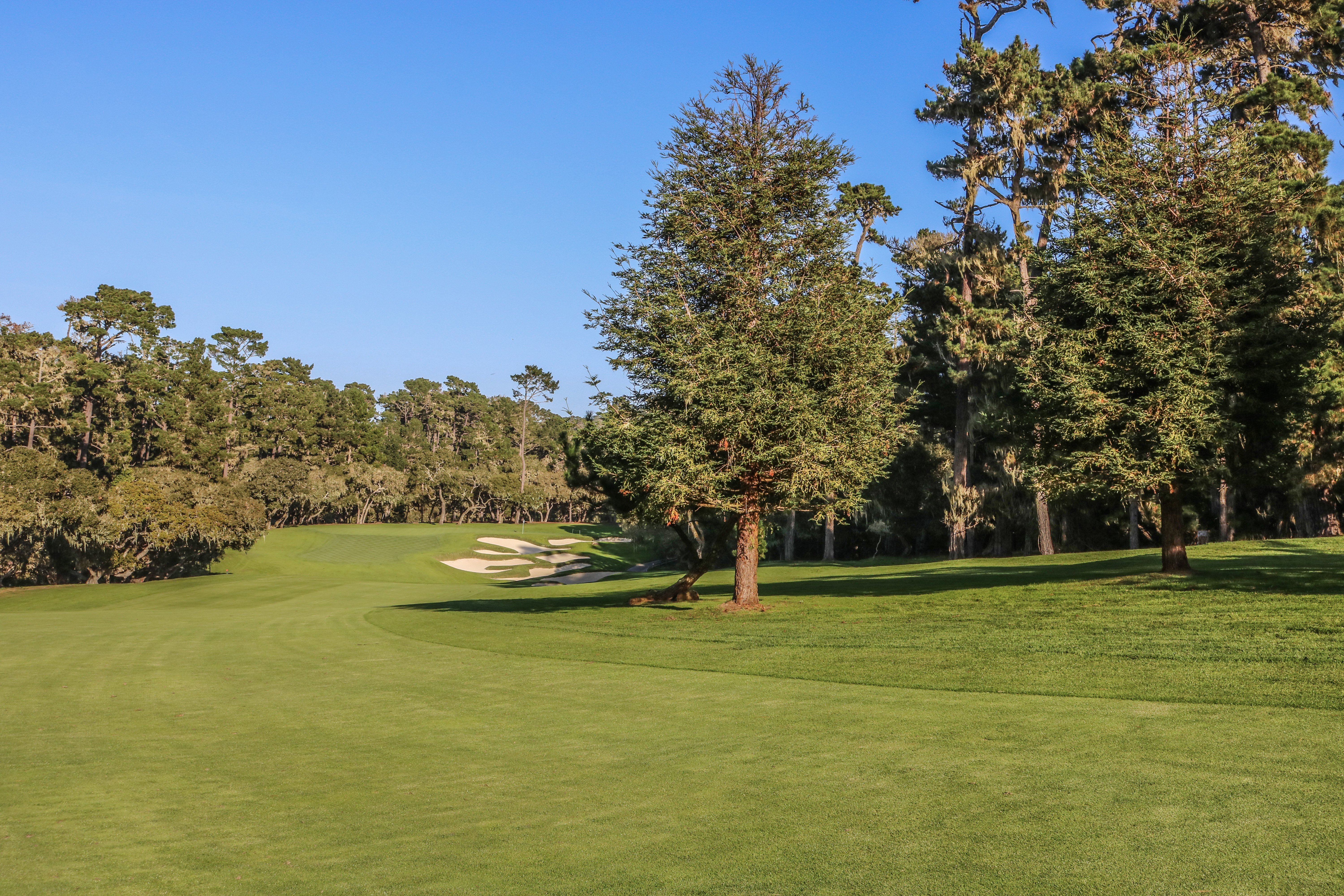 11th hole at Spyglass Hill