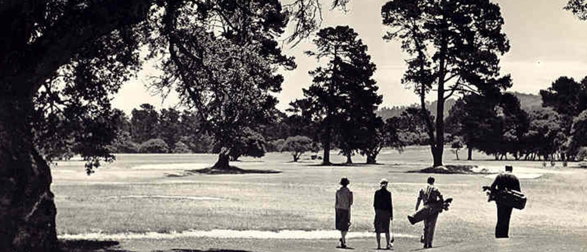 Four golfers walking on course