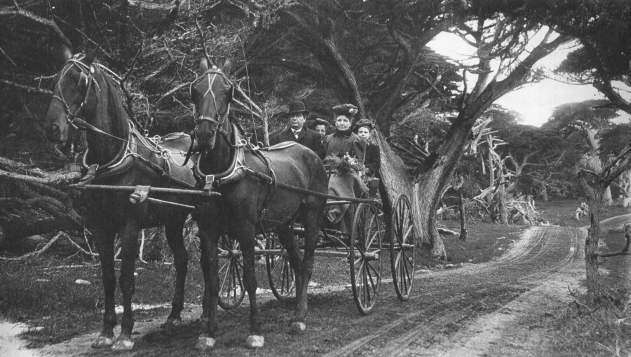 horses on the original 17-mile drive