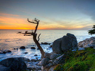 Sunset on the rocky Pebble Beach coast