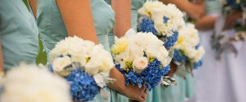Weddings Trends & Insights