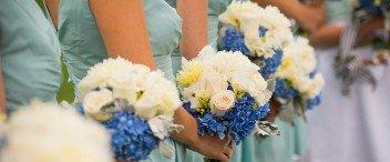 Weddings Trends & Insights